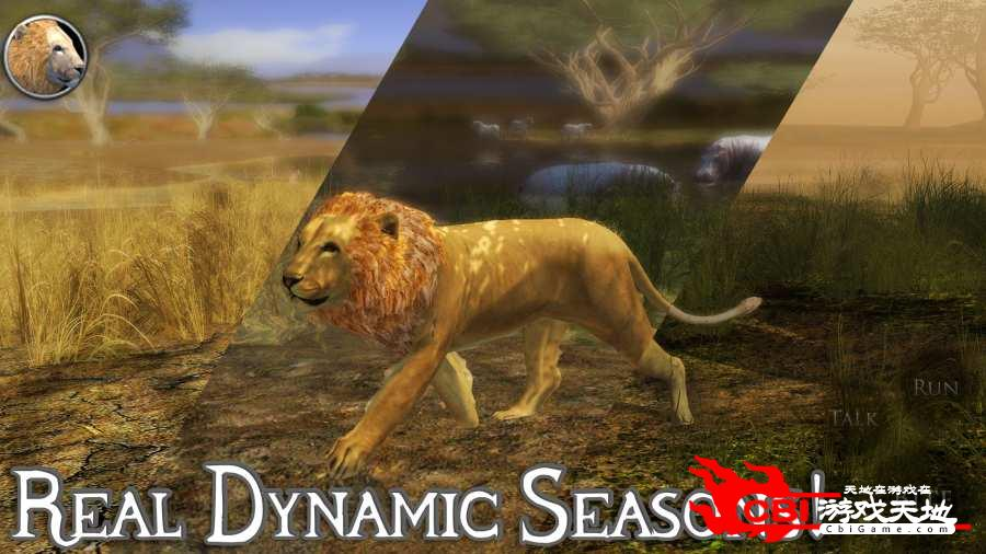 终极狮子模拟器2图3
