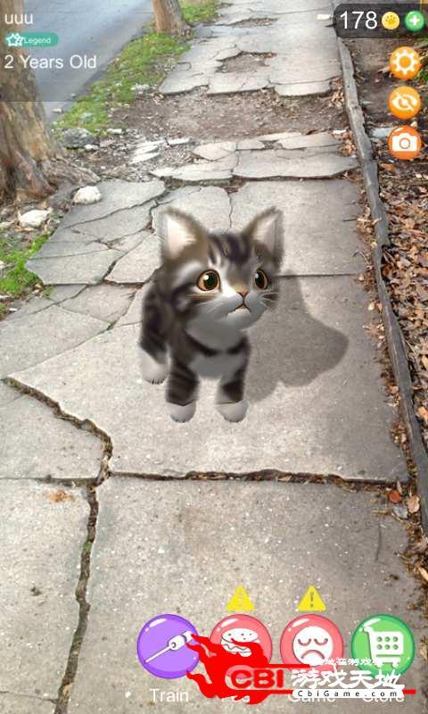 AR猫咪图1