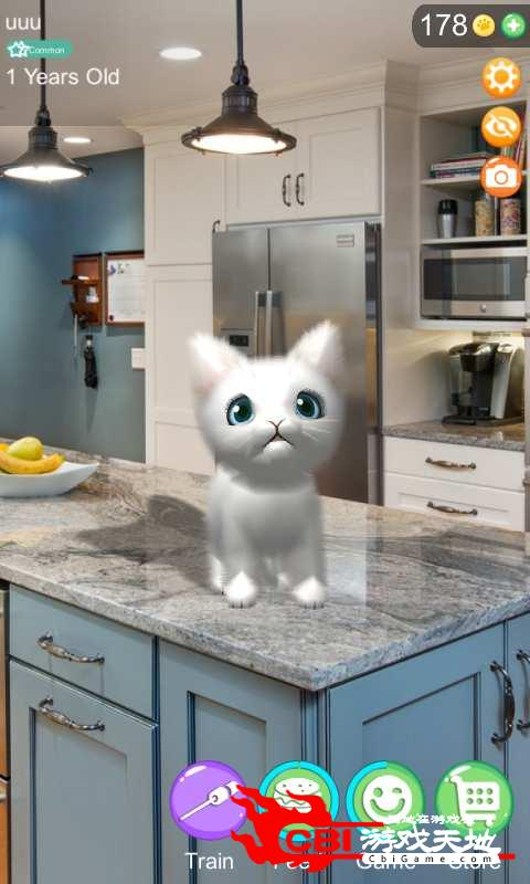 AR猫咪图3