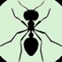 蚂蚁爱吃小米