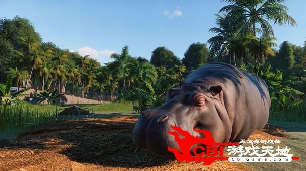 动物园之星中文版图0