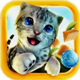 猫咪汗蒸馆