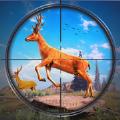 野鹿狩猎丛林射手