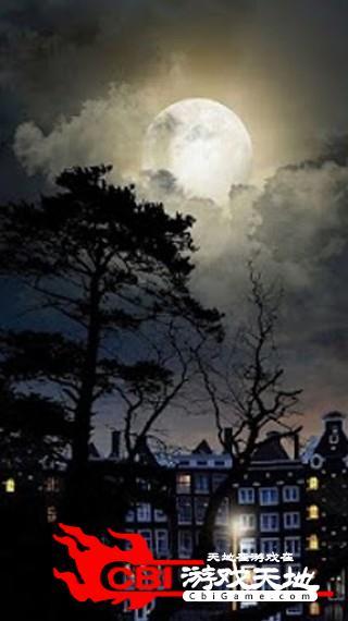 神秘的夜动态壁纸小说图1