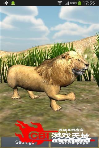 愤怒的狮子壁纸动态图1