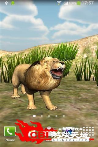 愤怒的狮子壁纸动态图0