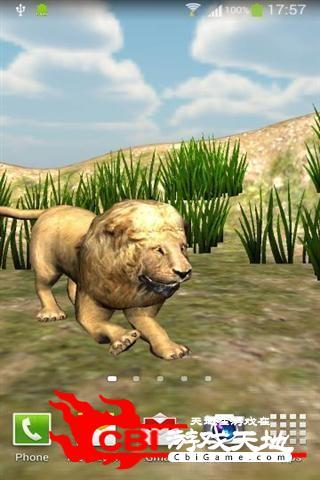 愤怒的狮子壁纸动态图2