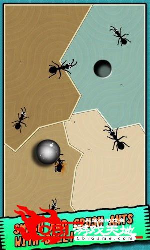 铁球大战蚂蚁图1