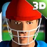 3D模拟板球