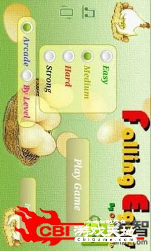 母鸡下蛋图1