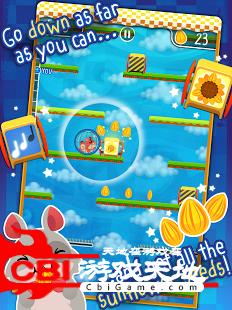 仓鼠球图5