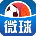 微球体育直播